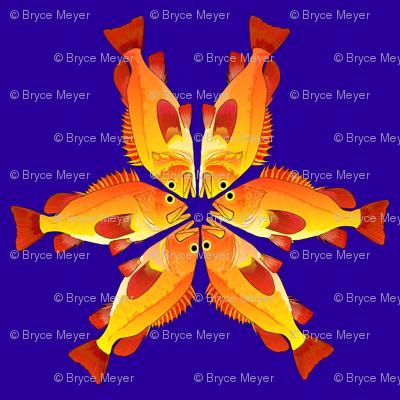 Yelloweye Rockfish Flames