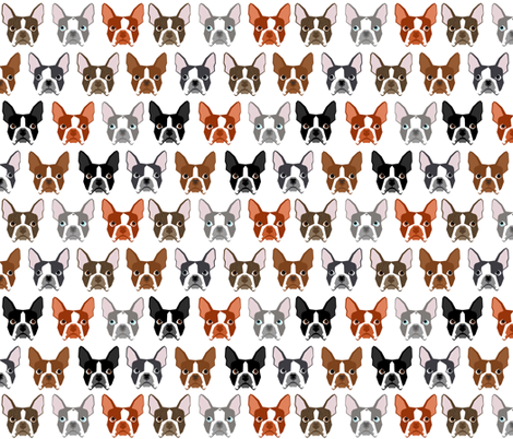 boston terriers boston dog dogs pet pets dog fabric fabric by petfriendly on Spoonflower - custom fabric