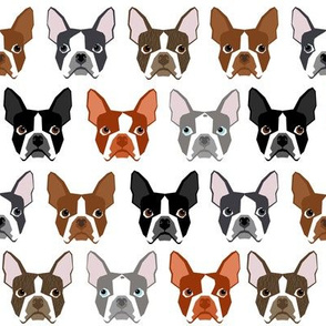boston terriers boston dog dogs pet pets dog fabric