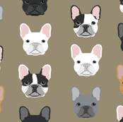 French Bulldog design sweet dogs pet puppy puppy dogs sweet frenchies dogs