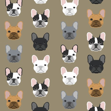 Rrfrench_bulldog_khaki_shop_preview