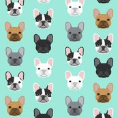 Rrfrench_bulldog_mint_shop_thumb
