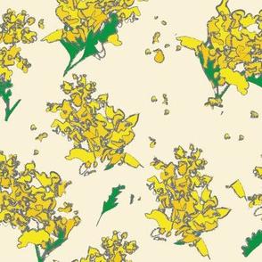 Acacia Abstract