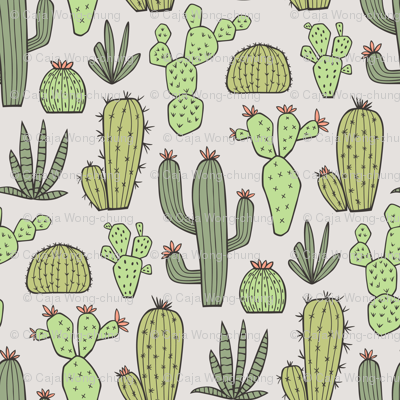 Cactus in Green