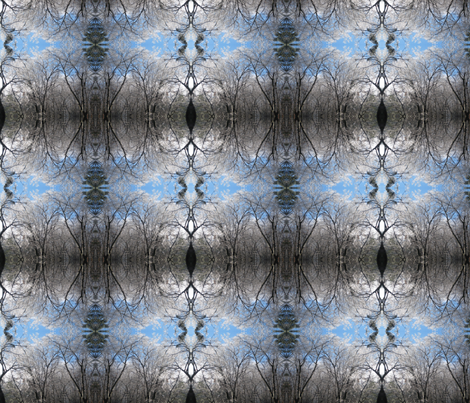 Winter_Sky1 fabric by jacneed on Spoonflower - custom fabric