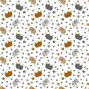Small Trotting Australian Shepherds and paw prints - white