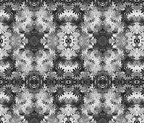 Rrblack_white_floral_digital_art_shop_preview