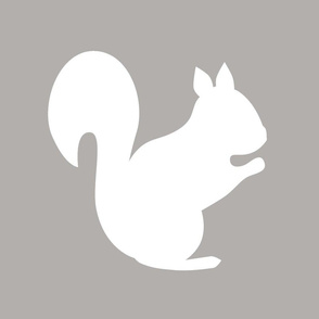 white_squirrel_4