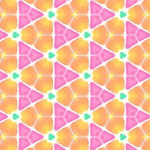 Grapefruit Fancy Geometric Water Color Kaleidoscope