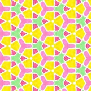Sporty Citrus  Geometric Water Color Kaleidoscope