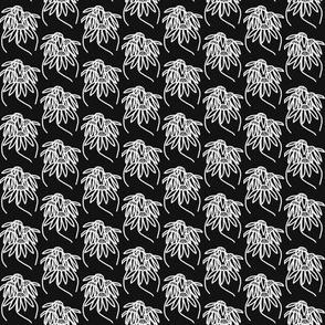 Coneflowers Black White