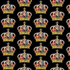 Yorkie crown