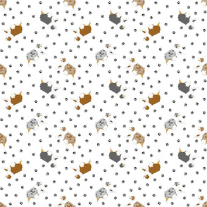 Tiny trotting Australian Shepherds and paw prints - white