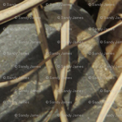 grass_and_rocks_003