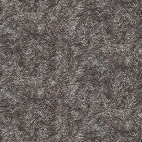 Gray Tabby Fur