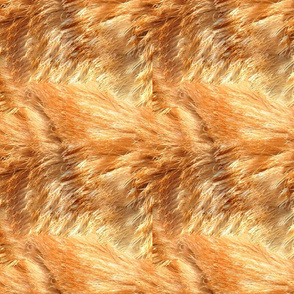 Orange Tabby Fur