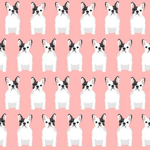 french bulldogs dog dogs pet pets pink baby girl nursery sweet dogs
