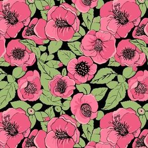 Pink floral, camellia