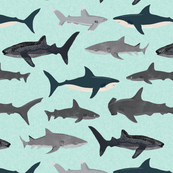 shark // sharks mint fish ocean sea nautical kids mint shark week