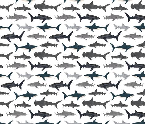 shark // sharks nautical boys white background kids ocean sea tiger shark hammerhead shark fabric fabric by andrea_lauren on Spoonflower - custom fabric
