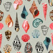 Rrshells_linen_shop_thumb