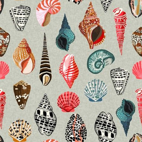 seashells // shells summer beach linen