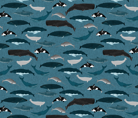 whale // whales ocean sea creature cetacean pod of whales beluga narwhal  fabric by andrea_lauren on Spoonflower - custom fabric