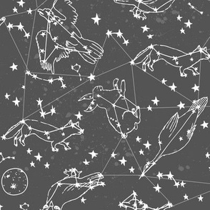 constellations // dark grey charcoal grey kids stars night sky