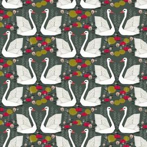 swan // swan pond swan lake birds girls sweet swans andrea lauren