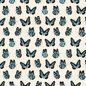 Bip_butterflies_sm_032016_shop_thumb