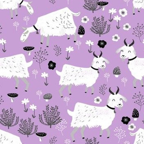 goats // pastel purple farm farm animal cute animal pastel purple spring easter lavender