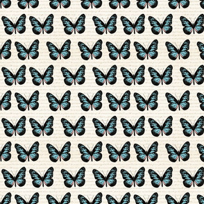 Butterflies in a row small