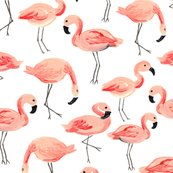 Flamingo-party_shop_thumb