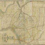 Texas_map_r1_copy1_shop_thumb