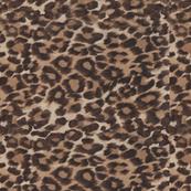 Velvet Leopard