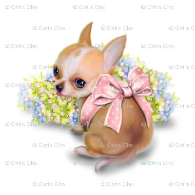 Chihuahua Baby white Large Pattern