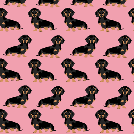 dachshund doxie winer dog pink cute dog dogs fabric sweet dog puppy fabric by petfriendly on Spoonflower - custom fabric