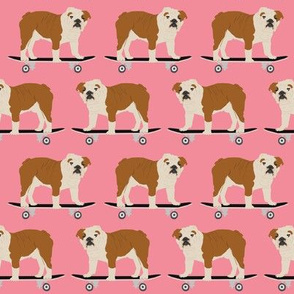 english bulldog skateboard pink girls sweet pet pet dog dogs funny english bulldog