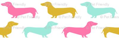 dachshunds dog cute pet dogs sweet pet pink mint gold girls sweet dogs