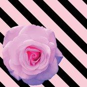 Rrrrrrosey_stripe_shop_thumb