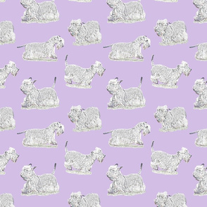 Frolicking Cesky Terrier - purple