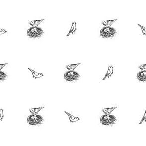 Nesting Bird Sketch - BW (Small)