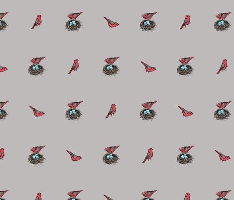 Rnesting_bird_sketch_-_scarlet_tanager_on_beige_shop_preview