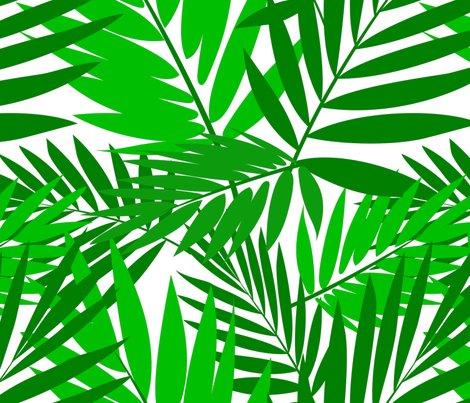 Palms_shop_preview