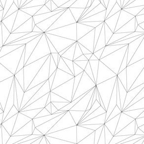 Color your own Polygons
