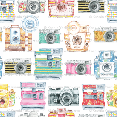 Watercolor Cameras - SMALL SCALE