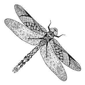 zen_dragonfly
