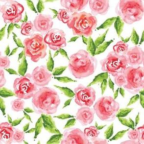 Rosies - white