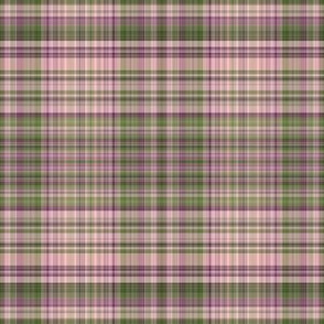 Ellmandia Plaid