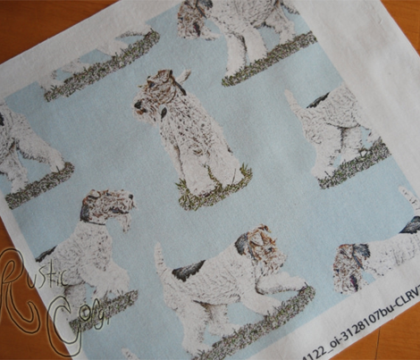 Playful Wire Fox Terrier - blue